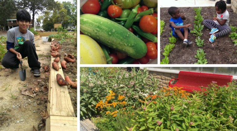 City of Greensboro NC Community Gardens
