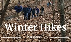 winter hikes button