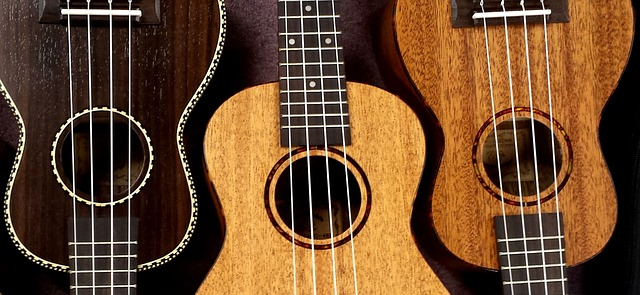 The Music Center Offers Ukulele Lessons Beginning September 10