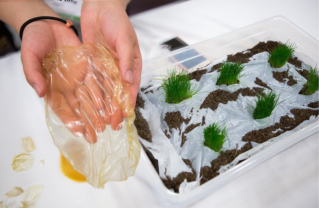 Biodegradeable-mulch film