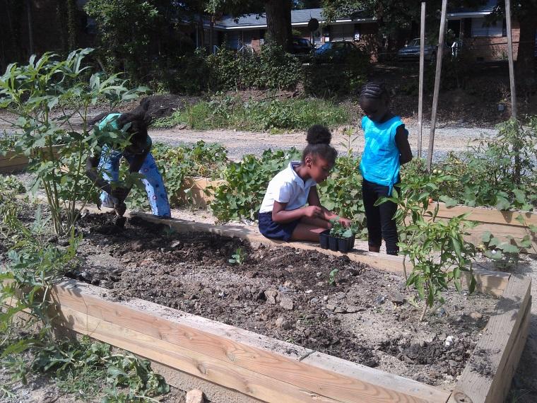 Gardens Greensboro Nc