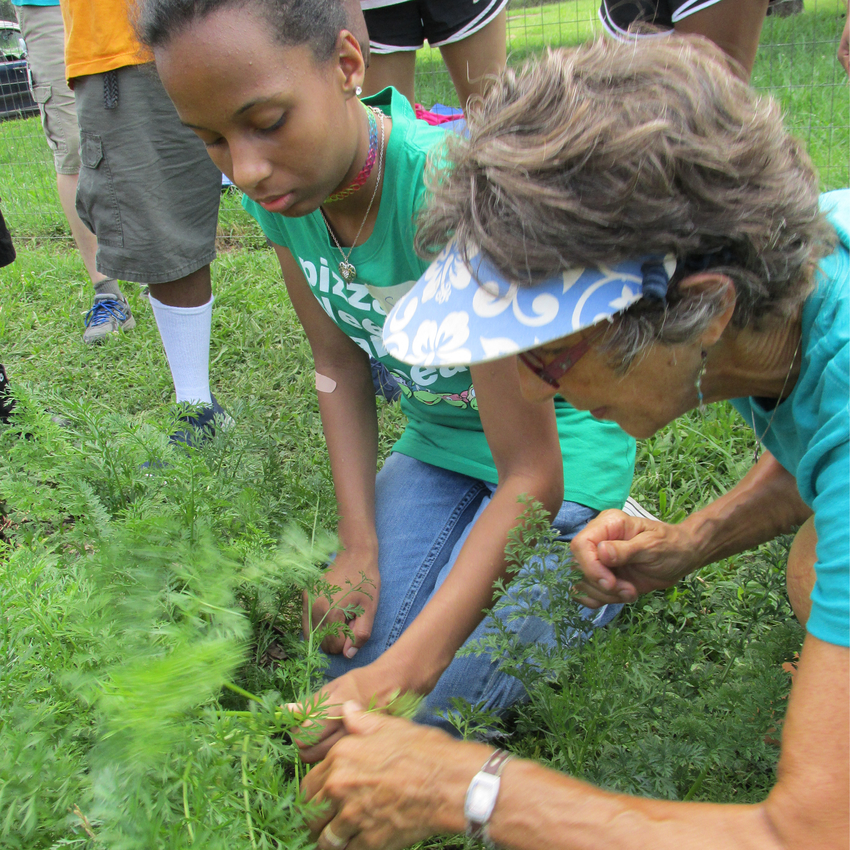 Service Learning Camp kids learn about organic gardening
